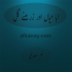 Abba Miyan Aur Zrminy Gul Cover Photo
