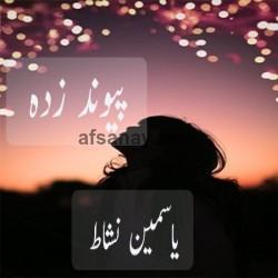 Paiwnd Zda Cover Photo